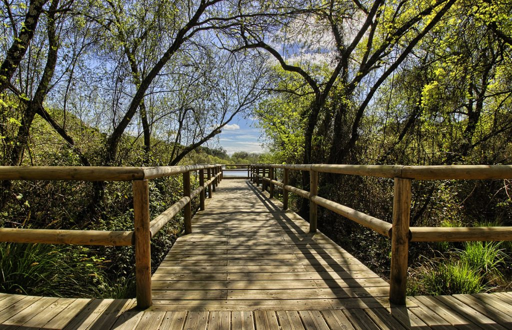 Por qué elegir a Lantana Garden como complejo hostelero para vacaciones de verano - Residencial Lantana Garden
